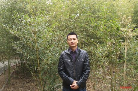 【中国画都网】推荐中国美术家协会会员潘如华
